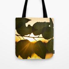 sunlight Through leaf Tote Bag