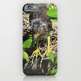 Intro to Life iPhone Case