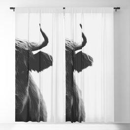 Highland bull Blackout Curtain