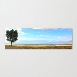 Heaven on Highway 1 Canvas Print