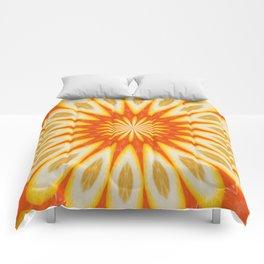 Simply Citrus  Lemon Slices and Blood Orange Comforters