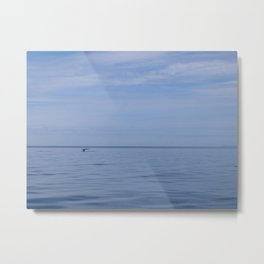 hello there mr. whale Metal Print