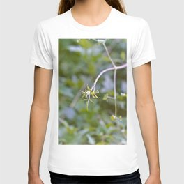 Growth and Transformation T-shirt