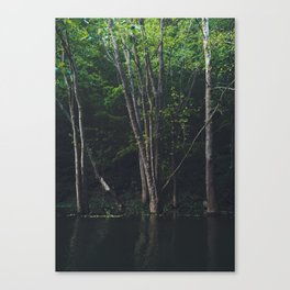 High Water in the Woods Canvas Print