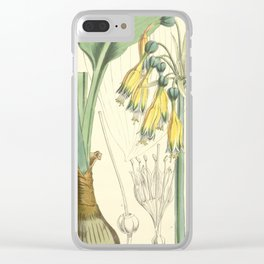 4952 Clear iPhone Case
