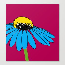The ordinary Coneflower Canvas Print