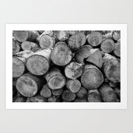 Pile of chopped firewood Art Print