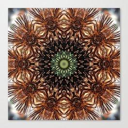 Nature mandala - Autumn coneflower seedhead Canvas Print