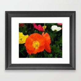 Poppies One Framed Art Print
