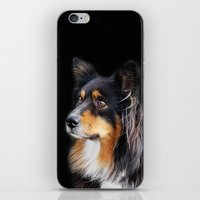 lucy iPhone & iPod Skins featuring lucy by ensemble creative