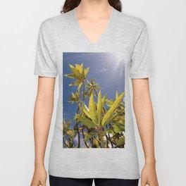 Crotons Unisex V-Neck