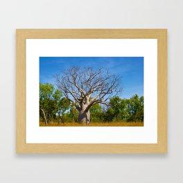 Beautiful Blue Boab Framed Art Print