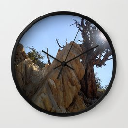 Tree leaning on rock Wall Clock