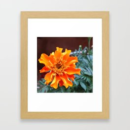 BRIGHT & BEAUTIFUL Framed Art Print