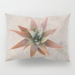 Mexico Succulent Pillow Sham