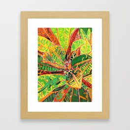 Where's Gecko? Framed Art Print