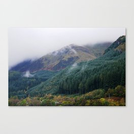 Misty forest #1 Canvas Print