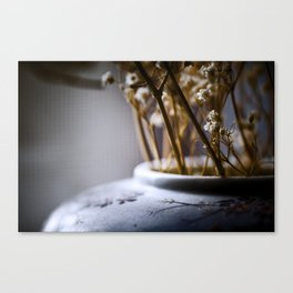 cold light of day Canvas Print