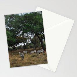 Zebras. Stationery Cards