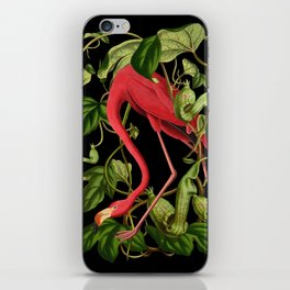 Flamingo Black iPhone Skin
