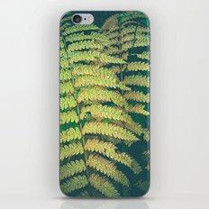 Woodland Fern iPhone & iPod Skin