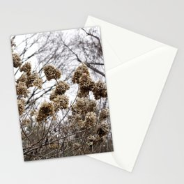 Merryweather Stationery Cards