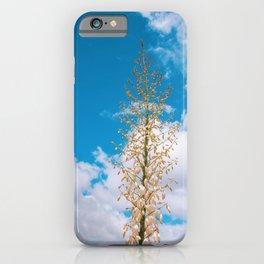 Malibu Bloom iPhone Case