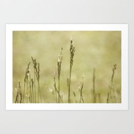 Grass is Greener Art Print