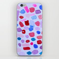 Garden Rocks iPhone & iPod Skin