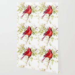 Northern Cardinal, cardinal bird lover gift Wallpaper