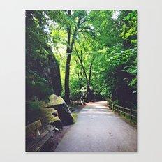 A Woodland Path Canvas Print
