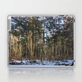 Winter at Home Laptop & iPad Skin