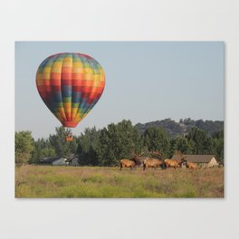 Drifting over Livestock Canvas Print