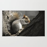 squirrel Area & Throw Rugs featuring Squirrel by Mandy Becker
