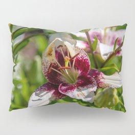 Opening Pillow Sham