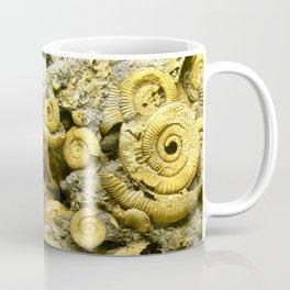 Fossils - Ammonite - Coiled Cephalopods  Coffee Mug