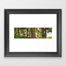 Treeline Framed Art Print