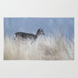 Cute youngster fallow deer in tall grass. Rug