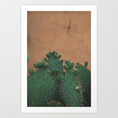 Route 66 Prickly Pears Art Print
