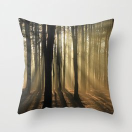 Nature's Beauty 3 Throw Pillow