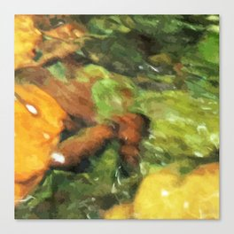Stones and Water Canvas Print