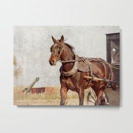 Rural Horse Power Metal Print