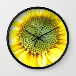 sunflower light Wall Clock