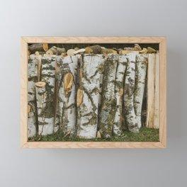 Birch wood - natural pattern Framed Mini Art Print