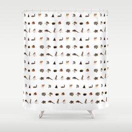 Australian wildlife Shower Curtain