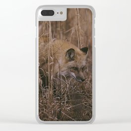 Red Fox Clear iPhone Case