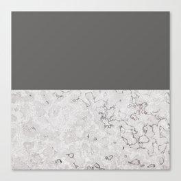 Monochrome Stone Canvas Print