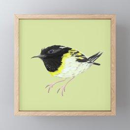 Stitchbird Framed Mini Art Print