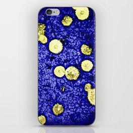Symphony of Night iPhone Skin