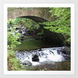 Little Bridge at the Falls Art Print